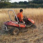 limpieza-terrenos-150x150
